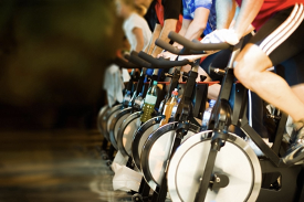 bicycles at the gym