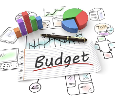 picture of budgeting graphs